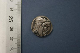 Obverse: Asia Minor Tissaphernes tetradrachm two part electrotype